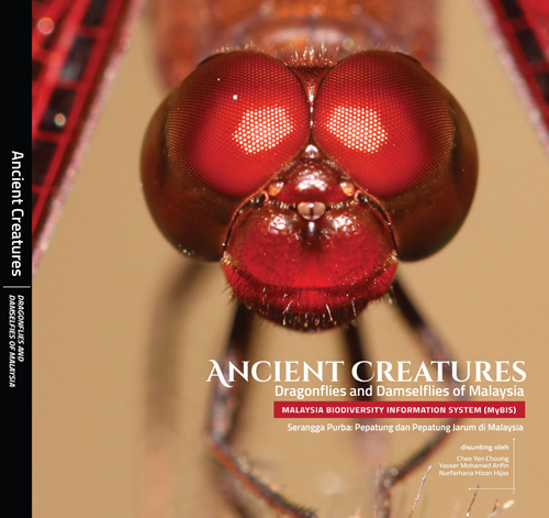 Ancient Creatures: Dragonflies and Damselflies of Malaysia
